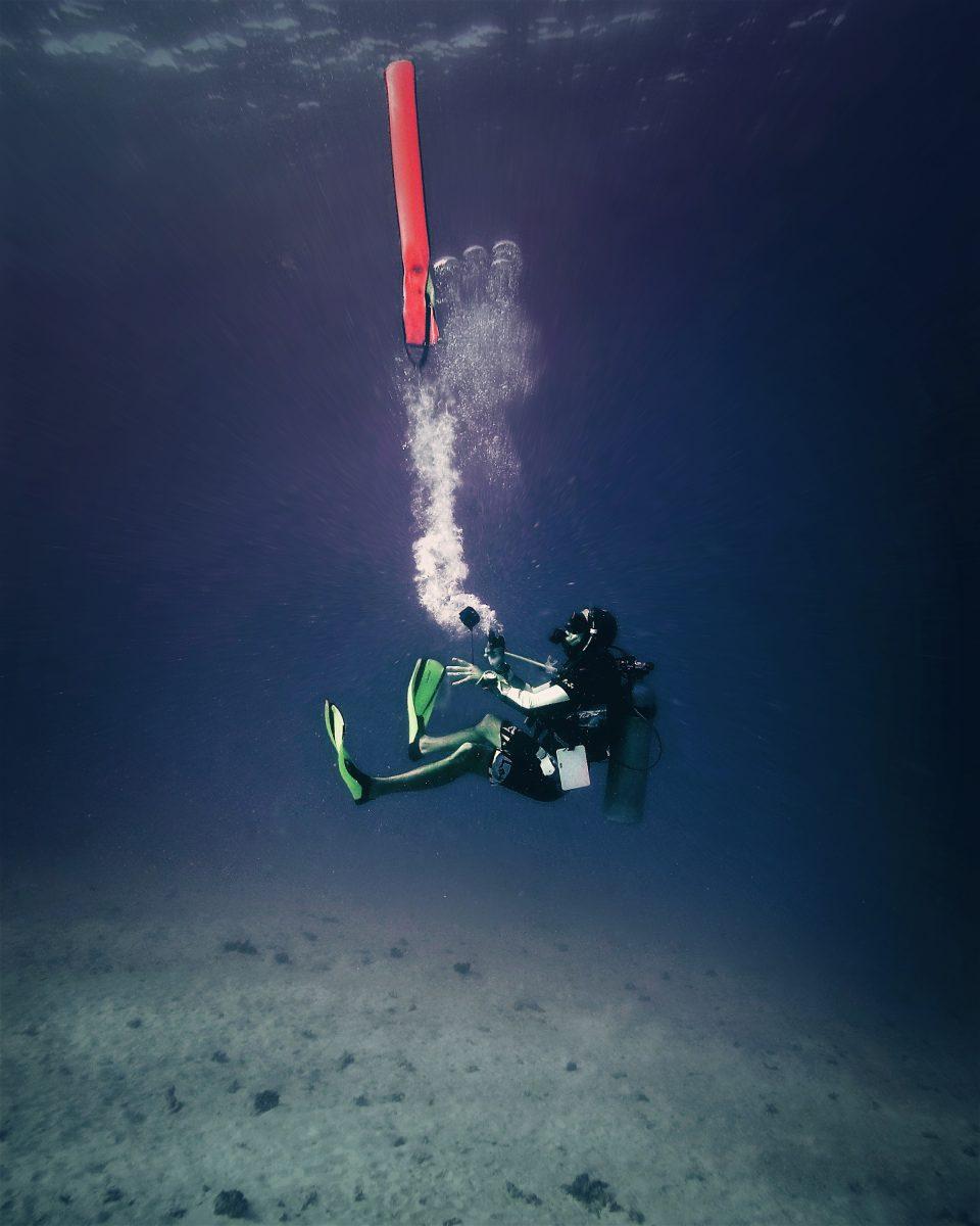 Diving oceans 5